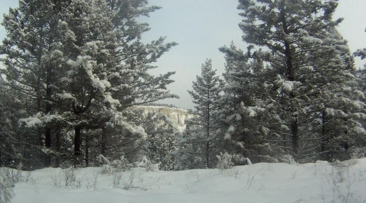 Screen Shot 2014-02-01 at 9.46.36 AM