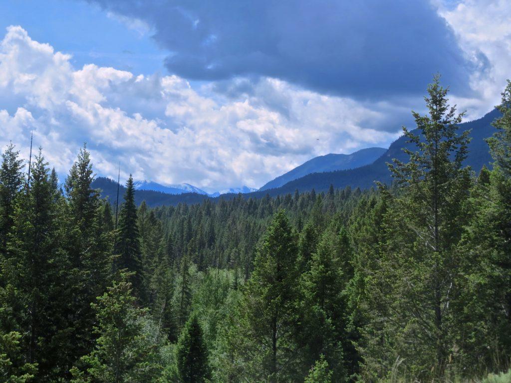 Southwestern View